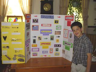 Cole's Science Project on Sharks