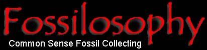 Check out our fossil page